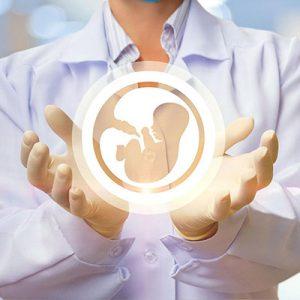 Wspomaganie<br />płodności u kobiet